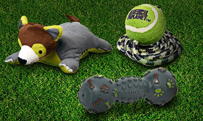Animal Planet Pet Toy 4-Pack: Animal Planet Pet Toy 4-Pack. Multiple Assortments Available. Free Returns.