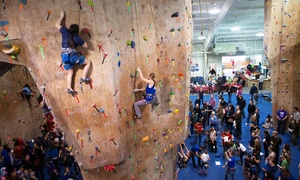 The Gravity Vault: Rock-Climbing Classes at The Gravity Vault (Up to 60% Off). Four Options Available.