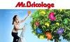 Mr Bricolage - Tarbes - Tarbes: Bon d'achat de 40 € au prix de 20 € à valoir chez Mr Bricolage - Tarbes