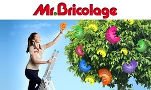 Mr Bricolage - Tarbes: Bon d'achat de 40 € au prix de 20 € à valoir chez Mr Bricolage - Tarbes