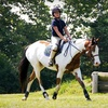 Up to 55% Off Horseback Riding Lessons or Camp