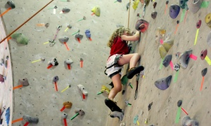 Red Rock Climbing Center: Introductory Learn to Climb Course and One Month of Climbing for One or Two at Red Rock Climbing Center (Up to 57% Off)