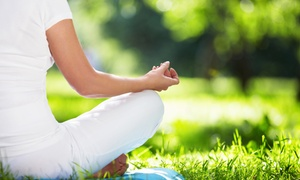 Breathe Deep: Four Weeks of Unlimited Yoga Classes at Breathe Deep Naturals (45% Off)