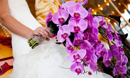 Two or Four Admissions to the Kalamazoo Wedding Affair on Saturday, January 10 (Up to $17 Off)