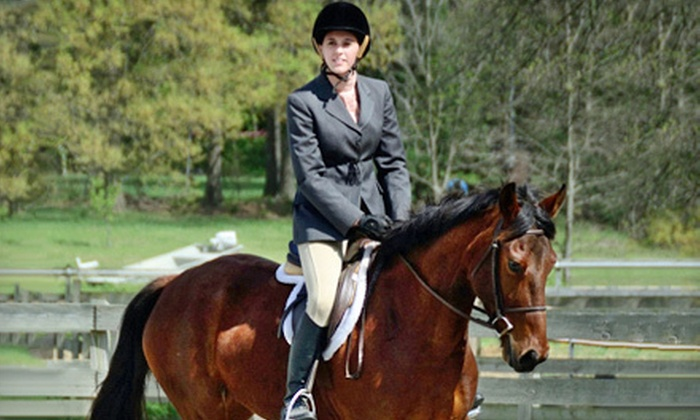 Zephyr's Way Stable - 2: One or Three Private or One Semi-Private Horseback-Riding Lesson at Zephyr's Way Stable in Powhatan (Up to 61% Off)