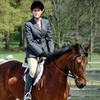 Up to 61% Off Horseback-Riding Lessons in Powhatan