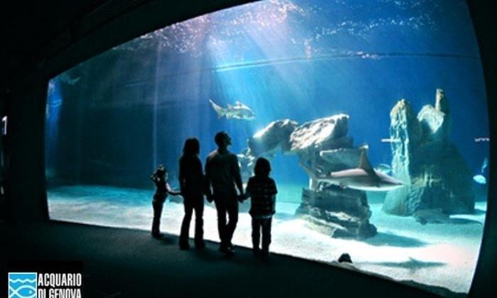 Babila srl - Genova: Ingresso all'Acquario di Genova con Padiglione Cetacei, Biosfera e Museo Nazionale dell'Antartide a 23,90 €