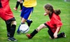 monroe multi-sports complex ice skating rink - Monroe: 1, 3, 6, or Up to 11 Weeks of Indoor-Outdoor Athletic Summer Day Camp at Monroe Multi-Sports Complex (Up to 62% Off)