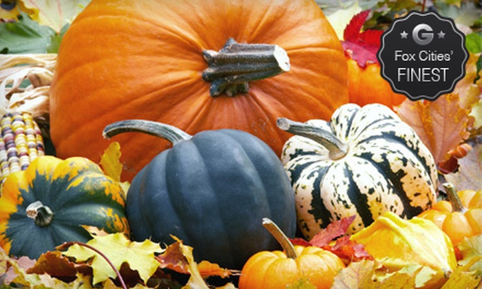 The Plant Station Greenhouse Inc. - Grand Chute: $15 for $30 Worth of Pumpkins, Plants, and Garden Accessories at The Plant Station Greenhouse Inc.