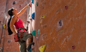 Dyno-Rock Indoor Climbing Center: Day of Rock Climbing for Two or Four with Gear at Dyno-Rock Indoor Climbing Center  (Up to 50% Off)