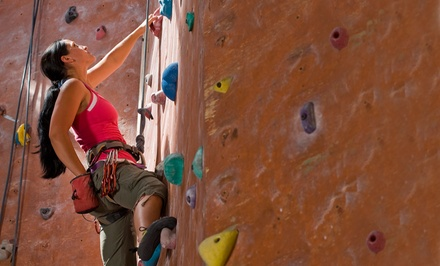 Day of Rock Climbing for Two or Four with Gear at Dyno-Rock Indoor Climbing Center (Up to 50% Off)