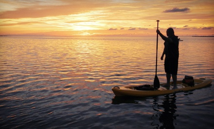Three- to Four-Hour Guided Kayaking Tour for One or Two at Florida Eco-Adventures, LLC (Up to 54% Off)