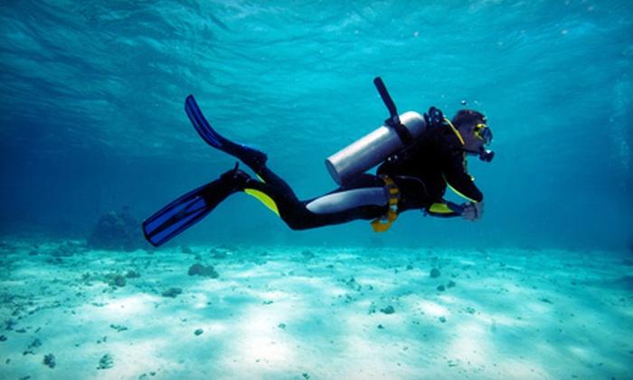 Caribbean Dreams Diving - Calgary: $24 for a 90-Minute Discover Scuba Course at Caribbean Dreams Diving ($50 Value)