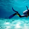 52% Off 90-Minute Introductory Scuba Course