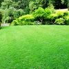 45% Off $77 Groupon from Avetera Lawn Care LLC