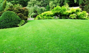 Hamilton County Services: Lawn Aeration with Optional Overseeding from Hamilton County Services (Up to 56% Off). Six Options Available.