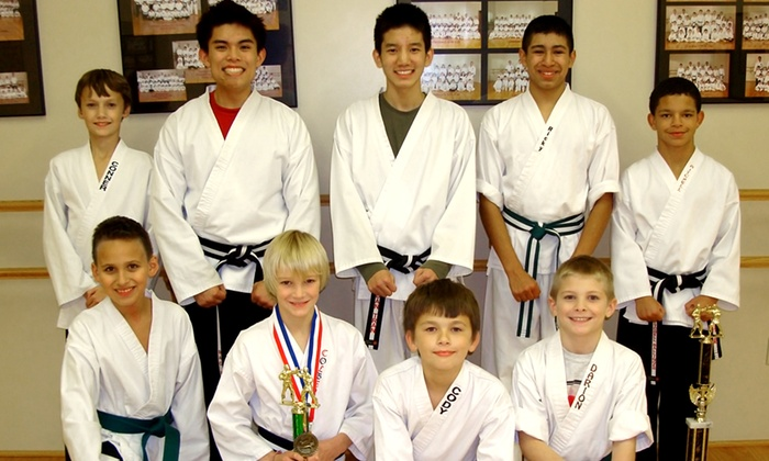 Fabiano's Karate - Holland: 10 or 20 Karate Classes with Uniform at Fabiano's Karate (Up to 72% Off)