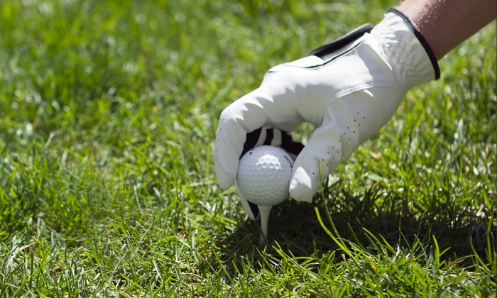 Elite Golf Schools at Augusta Ranch - Mesa: Golf Lesson Packages at Elite Golf Schools at Augusta Ranch (Up to 54% Off). Three Options Available.