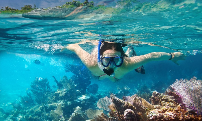 Reef Roamer and Quicksilver Catamarans - Key Largo: Afternoon Snorkel Trip for One or Two from Reef Roamer and Quicksilver Catamarans (Up to 46% Off)