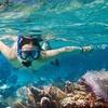 Up to 46% Off Snorkel Trip