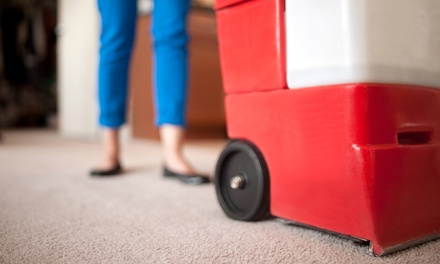 Carpet Cleaning and Optional Upholstery Cleaning from Evergreen Natural Cleaning Services (Up to 56% Off)