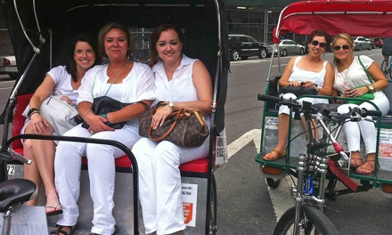 New York Walking or Pedicab Tour for One, Two, or Four from Eco Central Park Tours (Up to 61% Off)