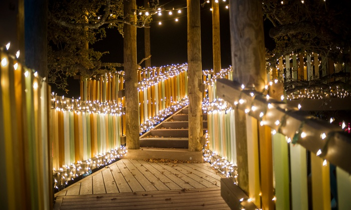 Camp Tejas - Lights of Tejas: Lights of Tejas Christmas Festival for One, Two, or Four with Meals and Activities at Camp Tejas (Up to 50% Off)