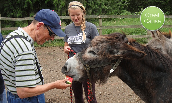 Equine Aid Horse & Donkey Rescue: $10 for $20 Donation to Feed Rescued Horses
