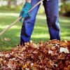Up to 60% Off Fall Yard-Cleanup Packages