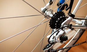 First Stop Bike Shop: Bicycle Gear and Accessories at First Stop Bike Shop (50% Off). Two Options Available.