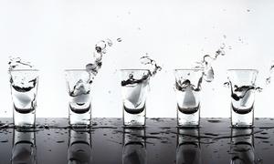 Wojtek Distillery: VIP Package for Two or Four with Artisan Cocktails and Shot Glasses at Wojtek Distillery (50% Off)