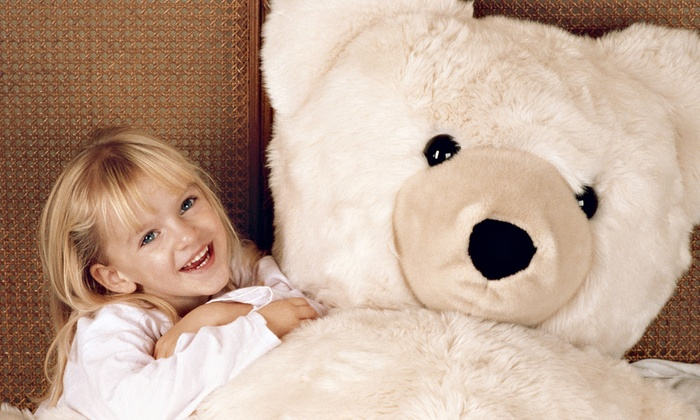 Chicago Playpen - Bronzeville: $16 for One Kid's Open-Play Session & Choice of Stuffed Animal with Outfit at Chicago Playpen ($32 Value)