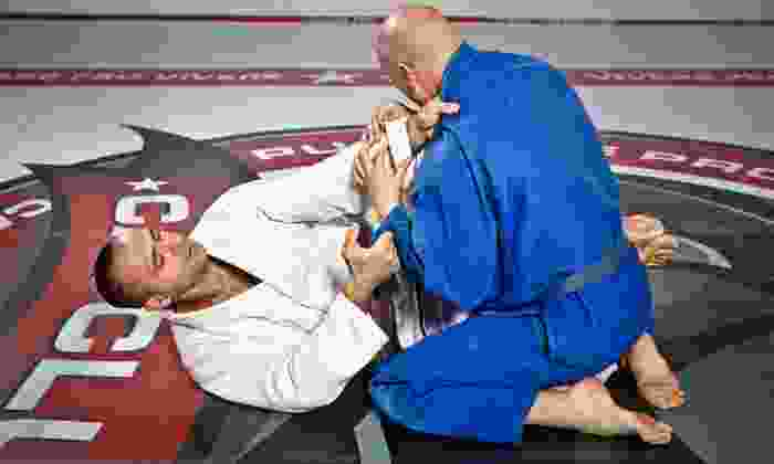 Systems Training Center Encino - Encino: Self-Defense or Brazilian Jiu Jitsu Classes for Adults or Kids at Systems Training Center Encino (Up to 81% Off)