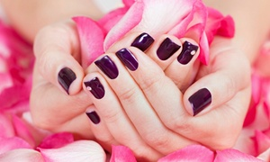 Inches Beauty Salon: Gel Polish on Hands and Feet (£15) Plus Eyebrow Tint and Spray Tan (£24) at Inches Beauty Salon (Up to 75% Off)