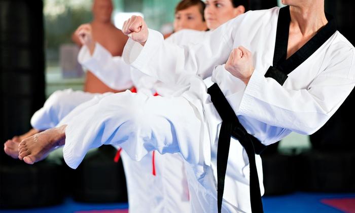 Edmonton Kyokushin Karate Club - Multiple Locations: Two-Month Individual or Family Membership to Edmonton Kyokushin Karate Club (64% Off)