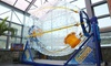 Skyventure New Hampshire - Southeast Nashua: Four-Minute Indoor Skydiving Experience or FishPipe Ride at Skyventure New Hampshire (Up to 40% Off)