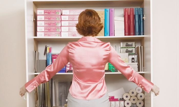Divine Elements of Design - Cinnamon Ridge: $99 for Home-Office Organization and FreedomFiler System at Divine Elements of Design ($205 Value)