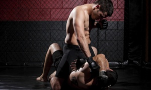 Pure Mixed Martial Arts: Four Weeks of Unlimited Martial Arts Classes at PURE MMA and Fitness (45% Off)