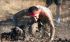 The Survival Race - Riverhead: $30 for Entry to The Survival Race 5K Mud Run  on Saturday, September 8 ($64.29 Value)