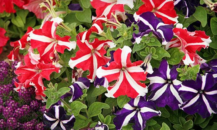 Seasons Nursery - Gaithersburg: $15 for $30 Worth of Plants and Garden Supplies at Seasons Nursery