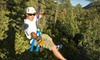 Full Blast Adventure Center - Dakota West Townhomes: Two-Hour Ponderosa Zipline Tour for Two or Four from Full Blast Adventure Center (Up to 55% Off)