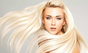 Blush Salon: Shampoo, Haircut, and Blow-Dry with Optional Partial Highlights at Blush Salon (Up to 56% Off)