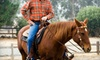 Restivo Performance Horses - Hutchins: Two or Four One-Hour Western Horse-Riding Lessons at Dream Horse Training & Lessons (Up to 60% Off)