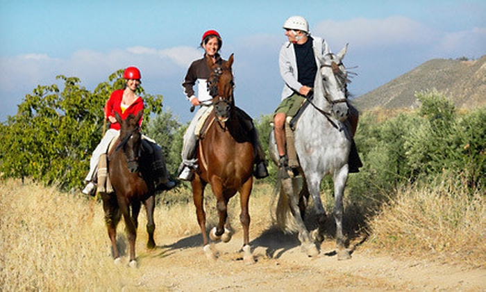 Saddle Up Wine Tours - Murrieta: One-Hour Horseback-Riding Trail Tour for Two, Four, or Six at Saddle Up Wine Tours (Up to 41% Off)