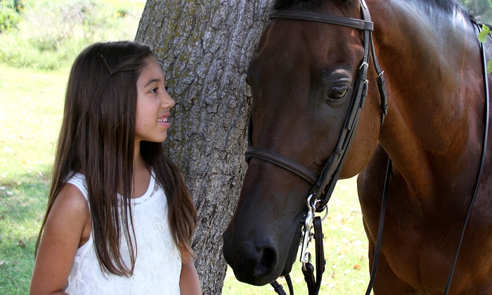 Majic Stables - Norman: One or Three Private Horseback-Riding Lessons at Majic Stables (Up to 67% Off)