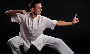 Davis Kung Fu: $48 for One Month of Tai Chi Classes $88 Value — Davis Kung Fu