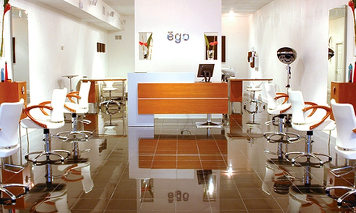 ego the salon - Boca Raton: Haircut and Blowout or Full Head Highlights at ego the salon (Up to 59% Off)