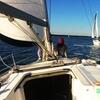 38% Off Sailing Tour
