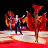 Up to 57% Off Shrine Circus