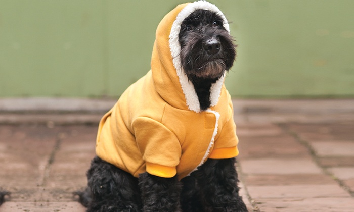 Outdoor Winter Dog Coats: Outdoor Winter Dog Coats. Multiple Styles Available. Free Returns.